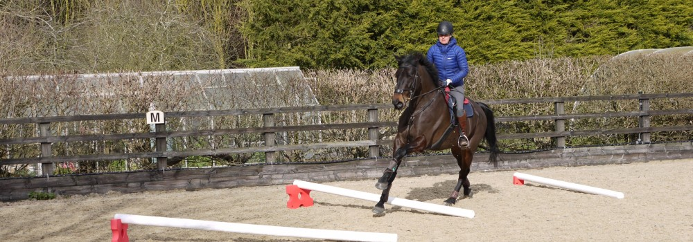 Best cavaletti for canter poles