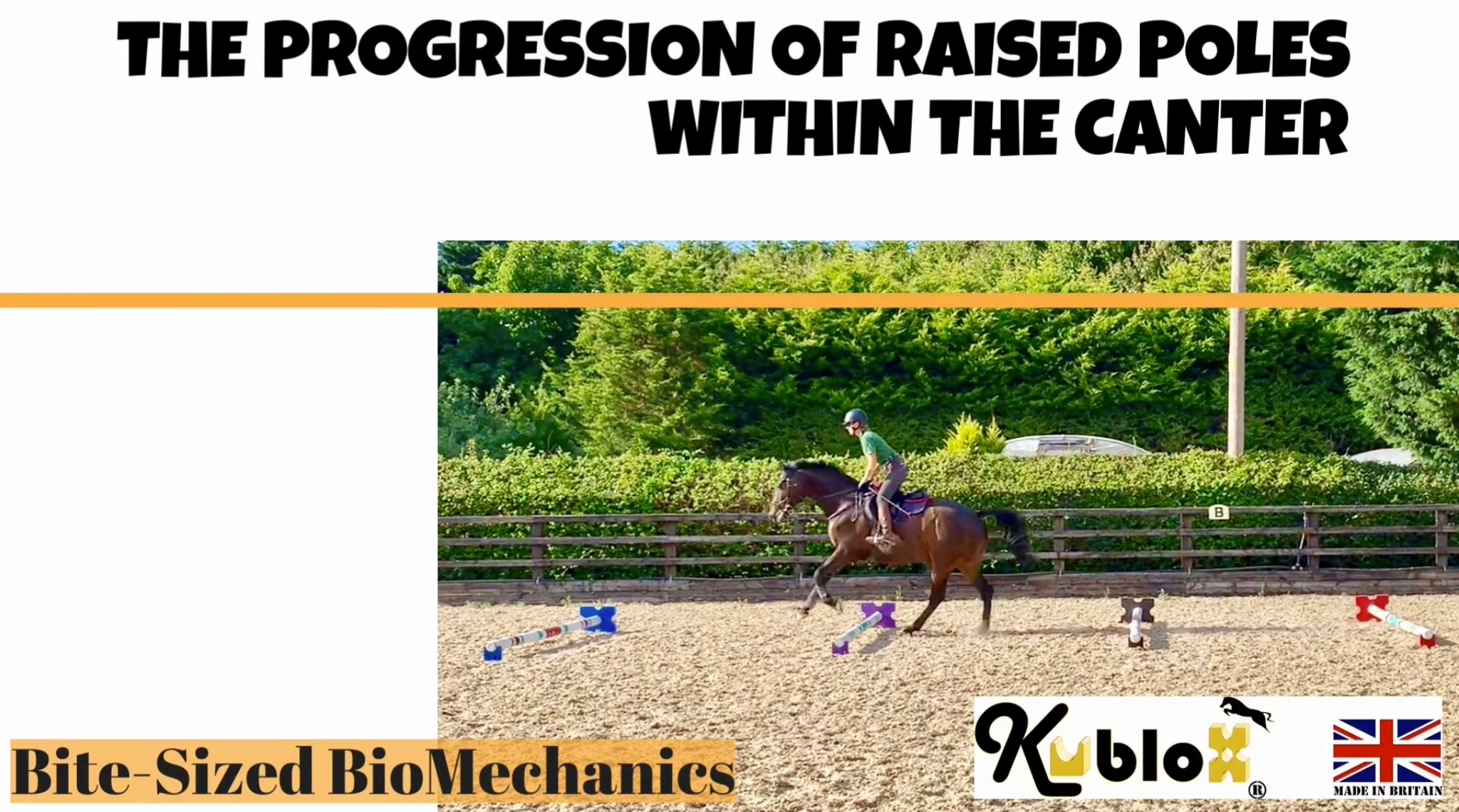The Progression of Raised Poles within the Canter.
