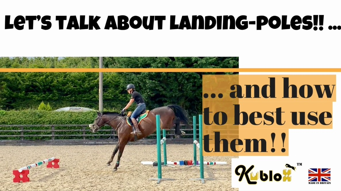 Effect of Landing Poles on Equine BioMechanics during Jump Phase