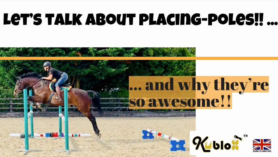 Effect of Placing Poles on Equine BioMechanics during Jump Phase