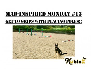 Mad Inspired Monday #13 - Get to Grips with Placing-Poles